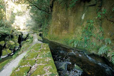 関吉の疎水溝の画像 p1_22